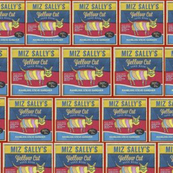 SUNDAY JAN. 28, 2018  MIZ SALLY Birthday/DVD Release party!